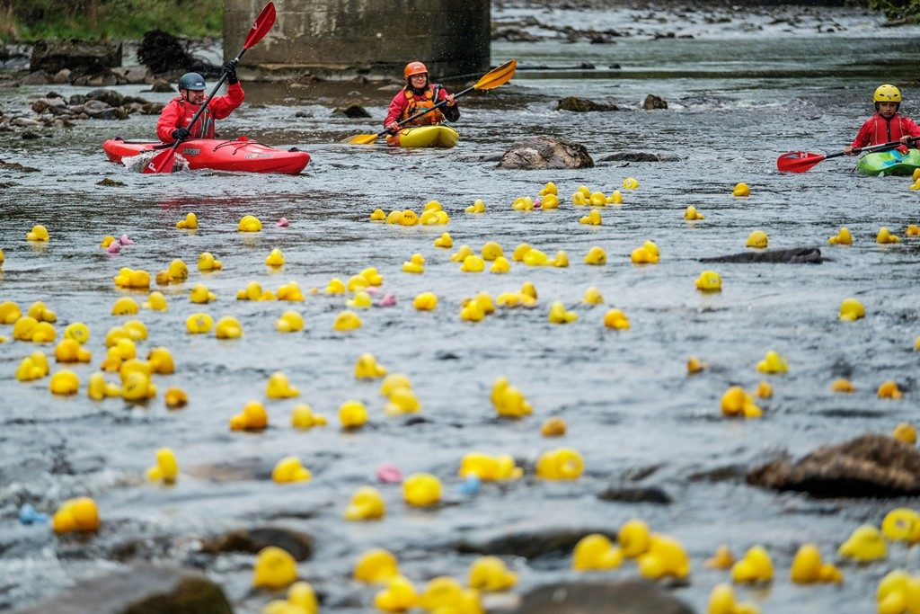 PHOTOS: Good weather for the Richmond Duck Race - Richmondshire Today
