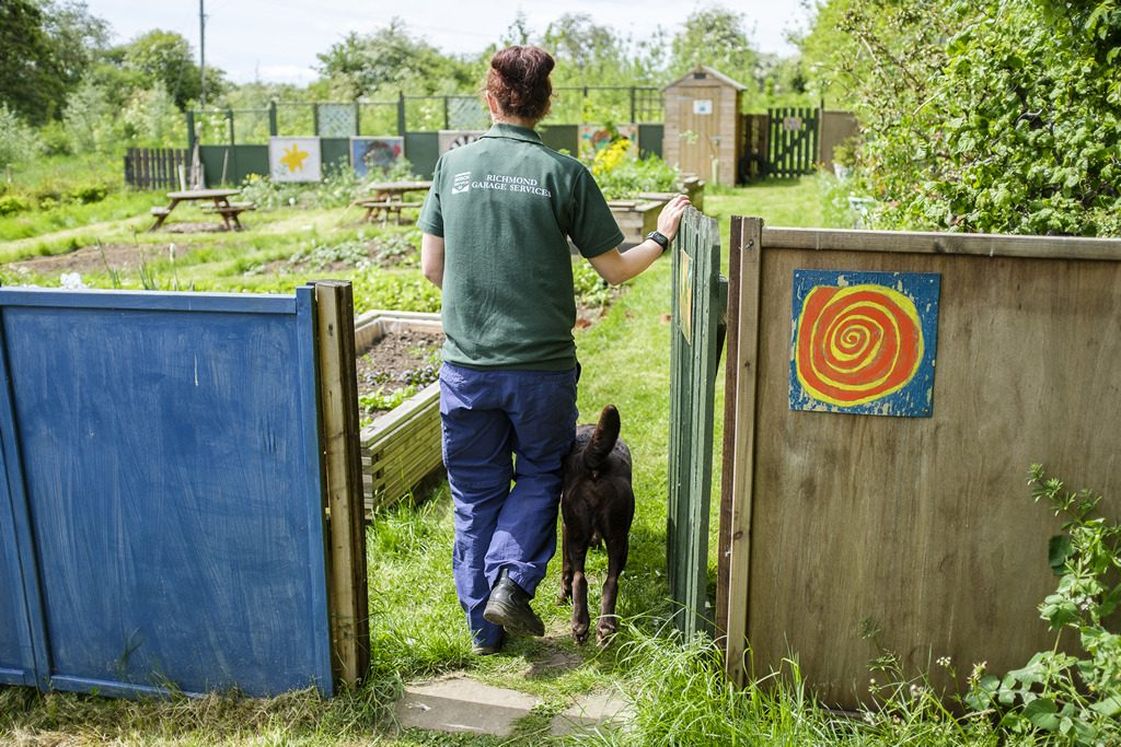 [ 23 de mayo de 2017 ] FOTOS: Hacer un spot de jardinería con la organización de caridad local, Sólo las Características del Trabajo - Richmondshire Hoy 16