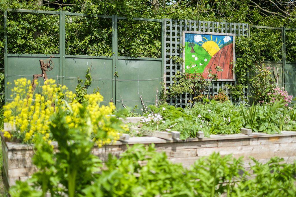 [ 23 de mayo de 2017 ] FOTOS: Hacer un spot de jardinería con la organización de caridad local, Sólo las Características del Trabajo - Richmondshire Hoy 18
