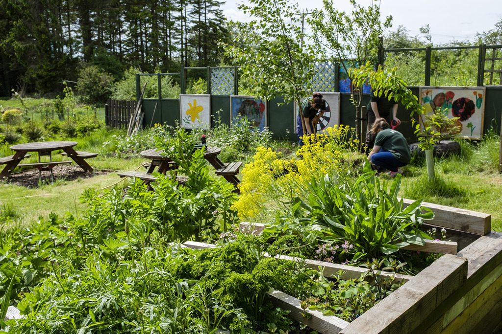 [ 23 de mayo de 2017 ] FOTOS: Hacer un spot de jardinería con la organización de caridad local, Sólo las Características del Trabajo - Richmondshire Hoy 25